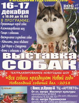 Выставка собак «Зима с Догшоу — 2017»